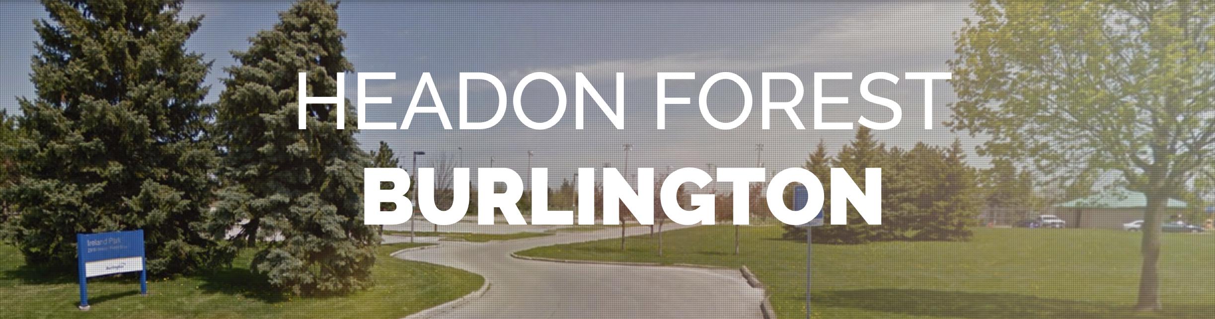 Headon Forest Burlington