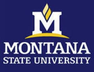 Montana State University Has 5th Highest Fall Enrollment Main Photo