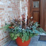 Last-Minute Ideas for Stylish Winter Container Designs Main Photo