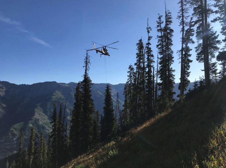 Zip Line, Logging and One Burley Chopper- Telski Readies for Winter, Next Summer Main Photo