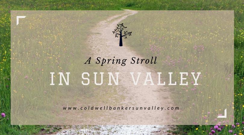 A Spring Stroll in Sun Valley Main Photo