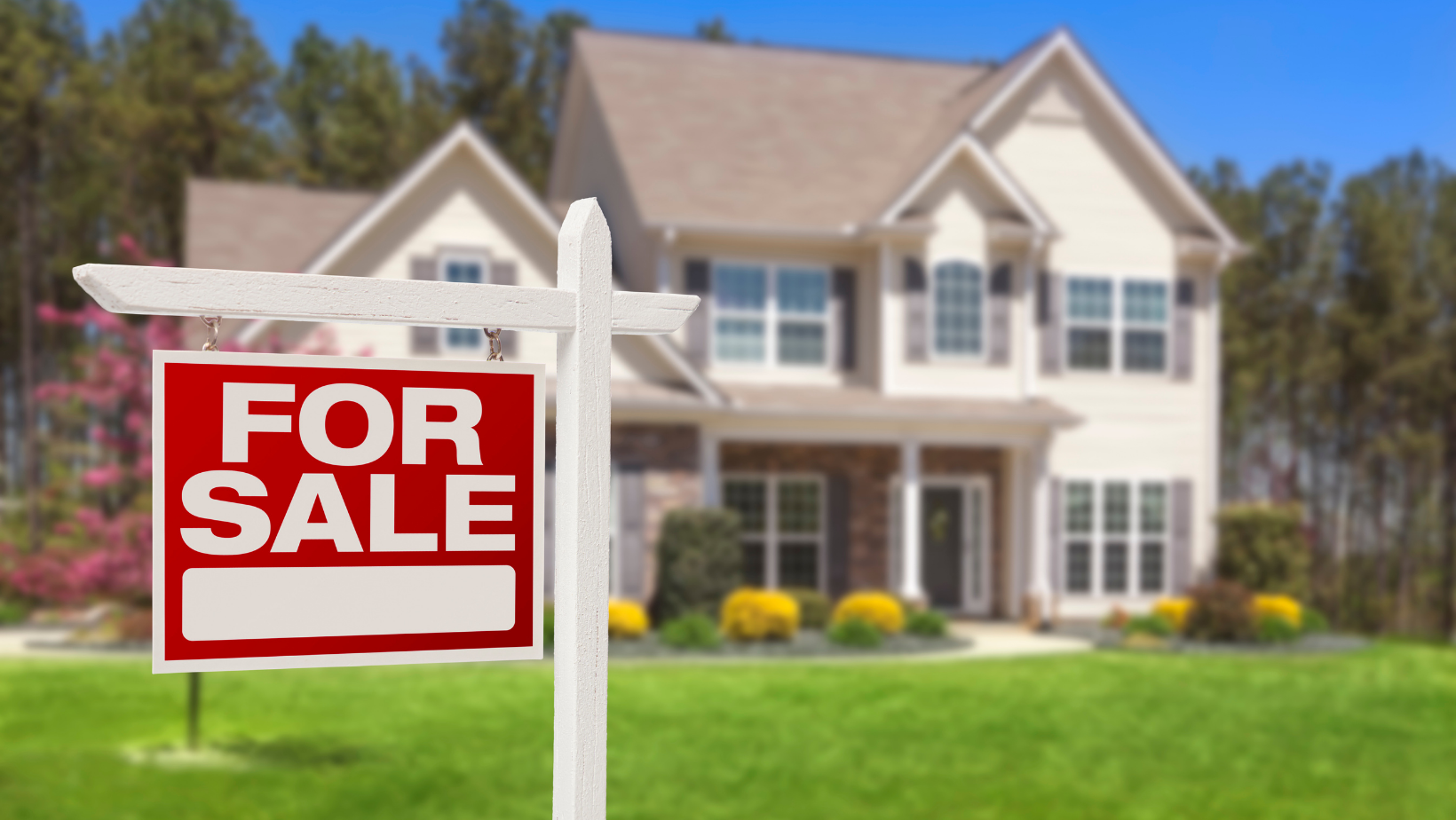 Realtor vs For Sale By Owner: What To Do in Today's Market Main Photo