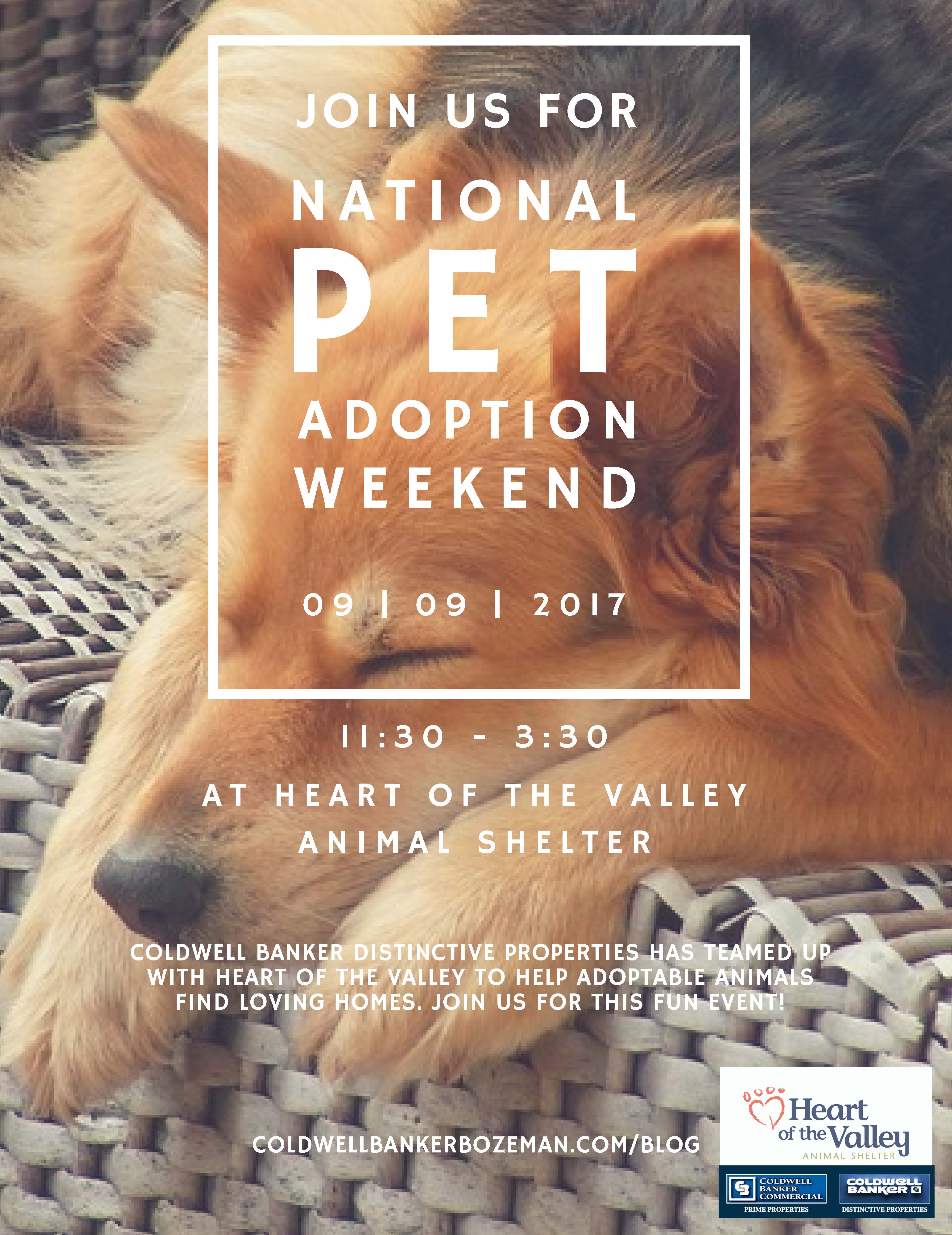 Pet Adoption Day At Heart Of The Valley