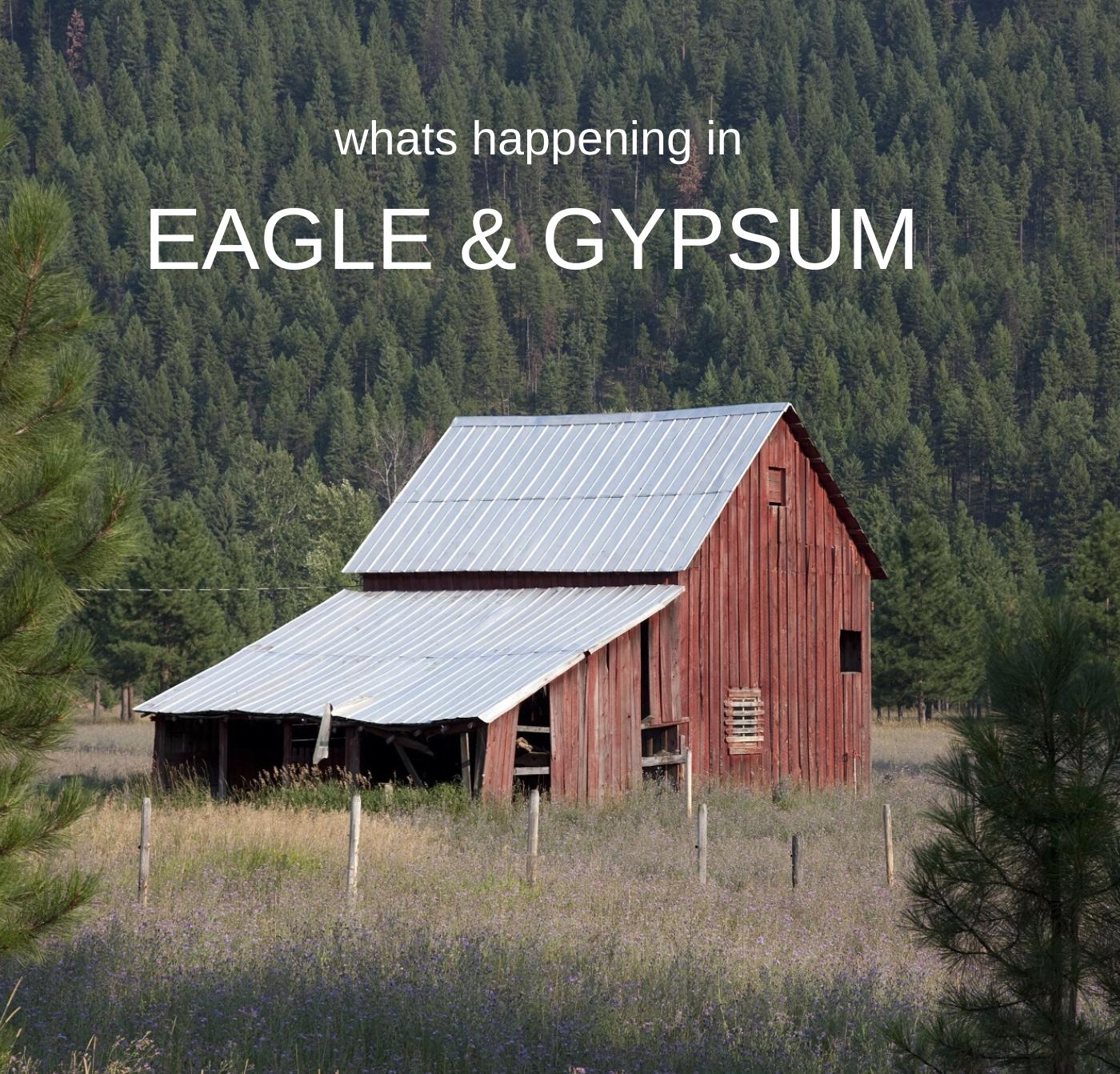 EAGLE/GYPSUM Picture