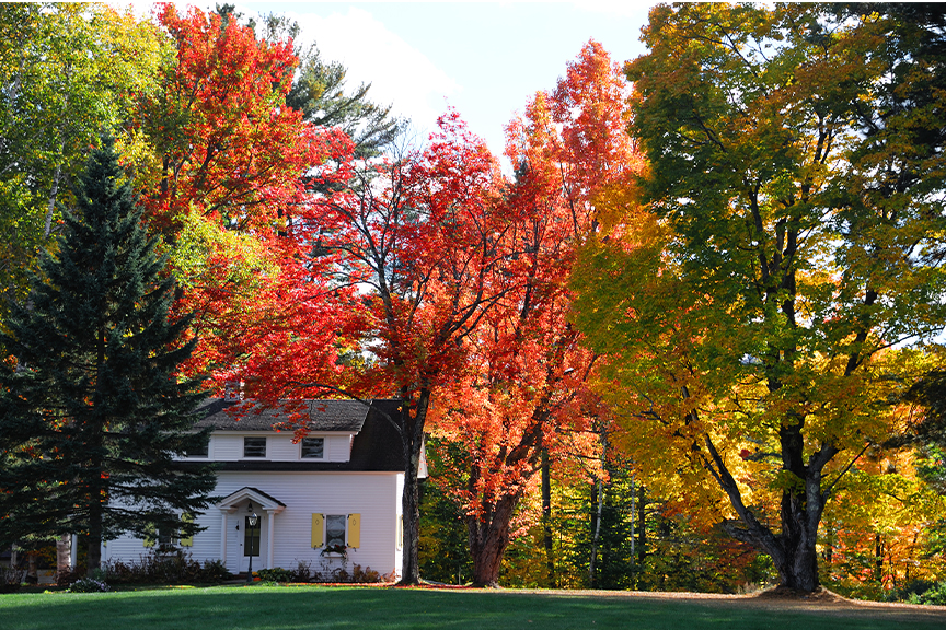 Why Fall Is A Great Time To Sell Main Photo
