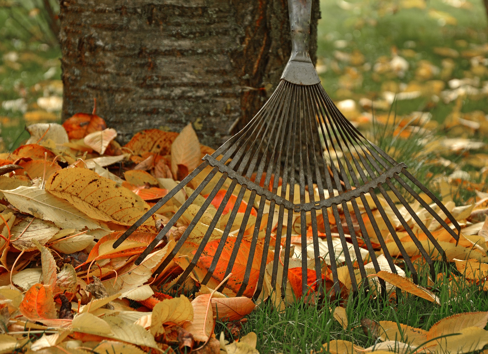 Best Home Projects to Do in Fall Main Photo