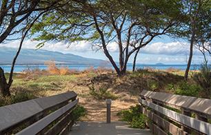 Maui Real Estate Sales