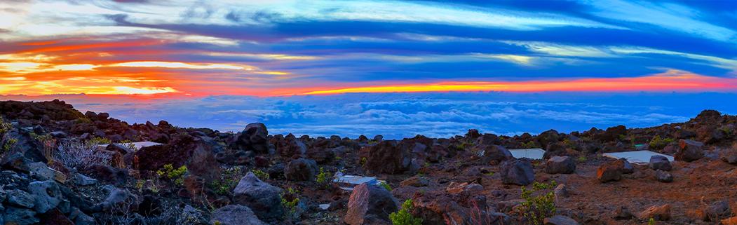 Hawaii and COVID