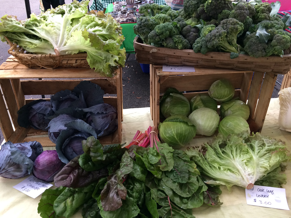 Living in Gainesville: The Bountiful Farmers' Markets Main Photo