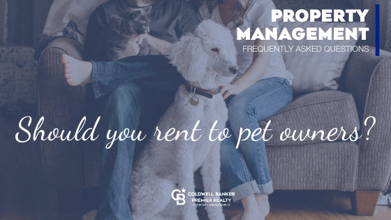 Should You Rent to Pet Owners? Main Photo
