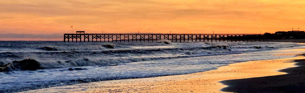 Homes for Sale in Pawleys Island, SC